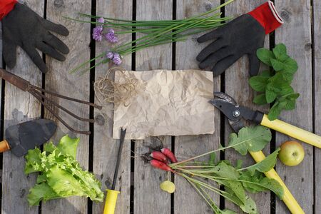 Kraft paper for your text surrounded by garden hand tools and a summer harvest.