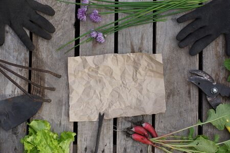 Crumpled crumpled paper for your text with garden tools and summer greens, top view.