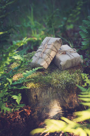 Two gifts wrapped in craft paper lie on a stump near ferns in the summer.