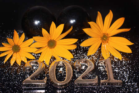 Three orange flowers on a dark background next to the numbers 2021 in metal Imagens
