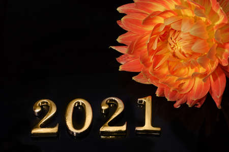 2021 lettering lined with metal numbers on a dark background next to a beautiful red dahlia flower Imagens