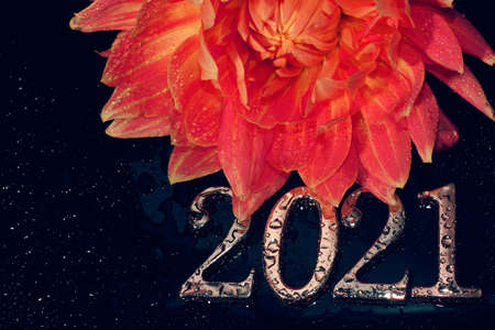 The 2021 metal numbers are covered with water droplets next to a beautiful red dahlia flower