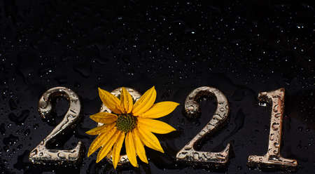 Metallic numbers 2021 in yellow flower on dark background Imagens