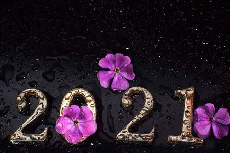 Wet numbers 2021 on a dark background with pink flowers Imagens