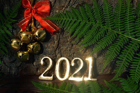 Golden numbers 2021 on the background of a tree trunk and a fern, bells with a red ribbon hang nearby Imagens