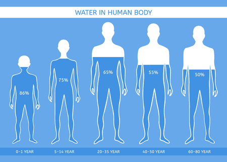 Water in human body. The man at different ages