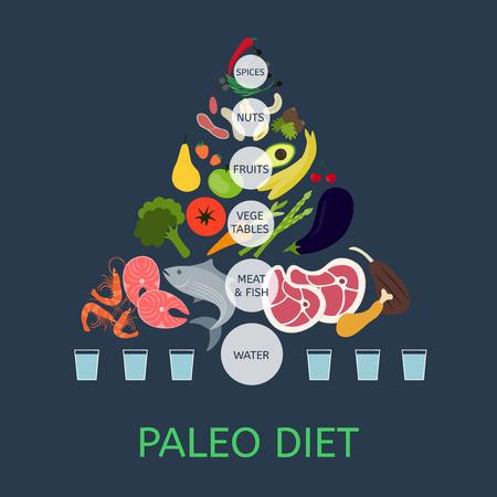 구석기 다이어트 피라미드. 건강 식품에 대한 정보. 일러스트
