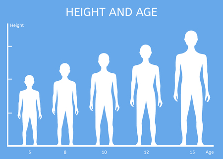 height: Height and age boys. Childrens figure Illustration