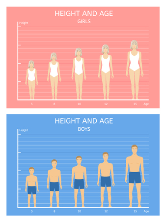 puberty: Height and age. Boys and girls from five to fifteen years Illustration