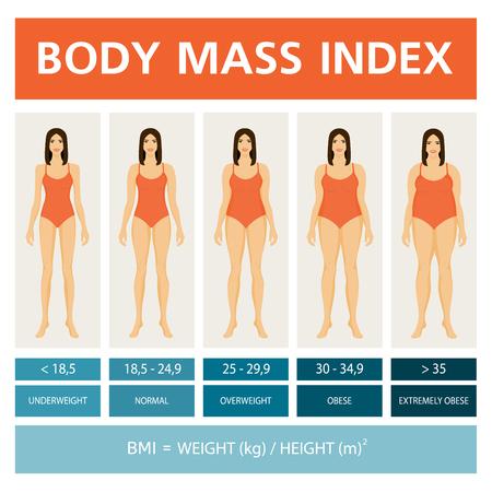 Ilustración de índice de masa corporal con figuras de mujeres. Ilustración de vector