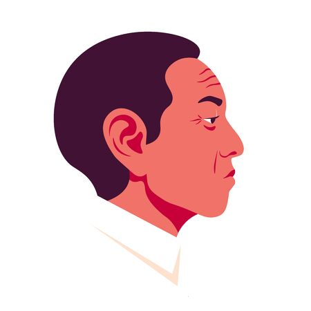 The head of a old asian man in profile. Chinese businessman face side view. Avatar for social networks. Vector flat illustration