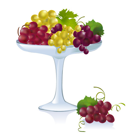 bowl with grapes. vector illustration