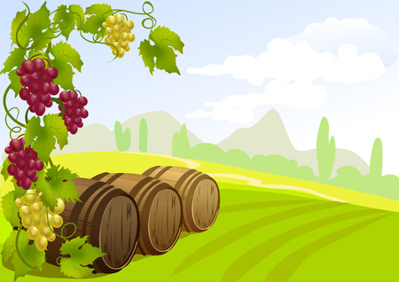 grapes, barrels and rural landscape. vector illustration