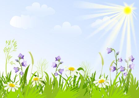 weide met wilde bloemen. vector illustratie Stock Illustratie