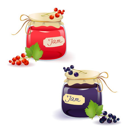 currants: set red and black currant jam. vector illustration