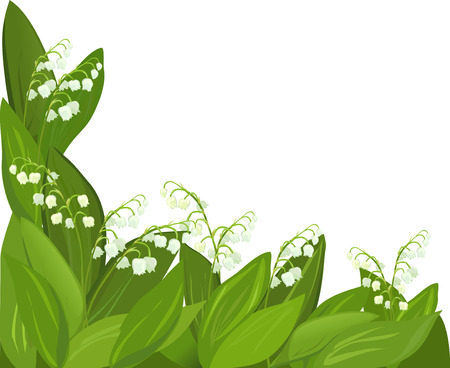 background flower lily of the valley Vector