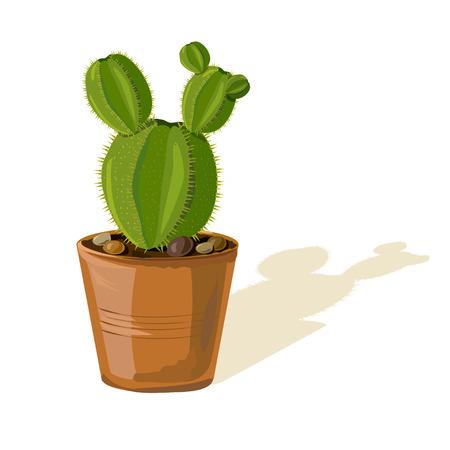 Kaktus in einem Topf isoliert. Vektor-Illustration