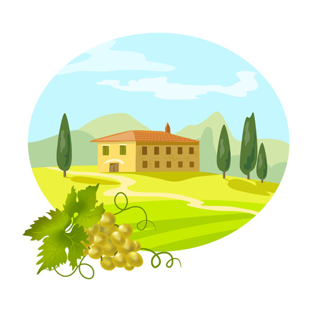 rural Tuscan landscape with a branch of grapes. vector illustration