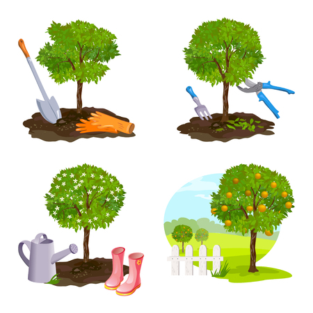 plantando arbol: conjunto de la plantación de árboles, trabajar en el jardín. ilustración vectorial Vectores