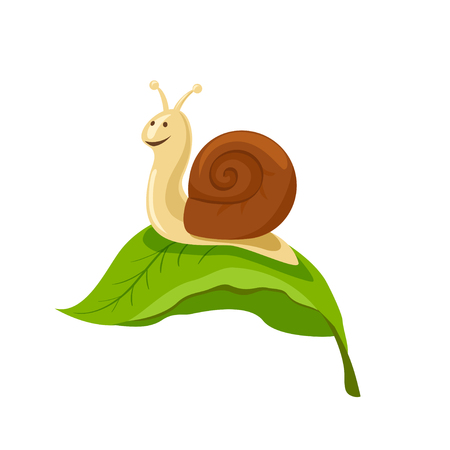 amusing: The snail is cheerful on the leaf. vector illustration. Illustration
