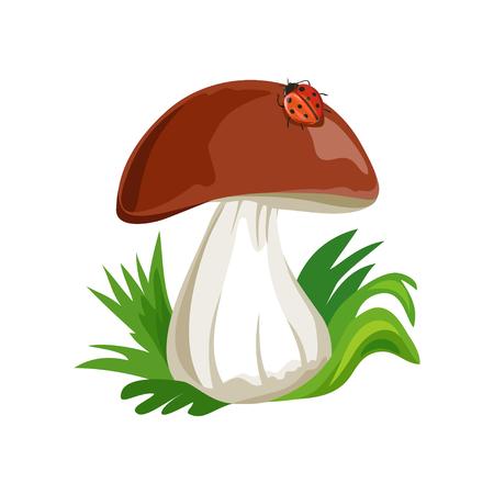 mushroom cartoon with ladybug isolated. vector illustration