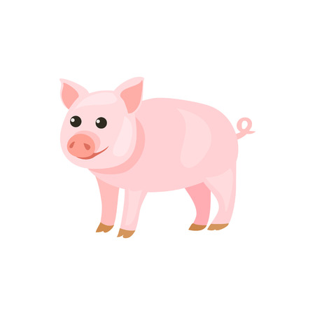 pig cartoon isolated. vector illustration