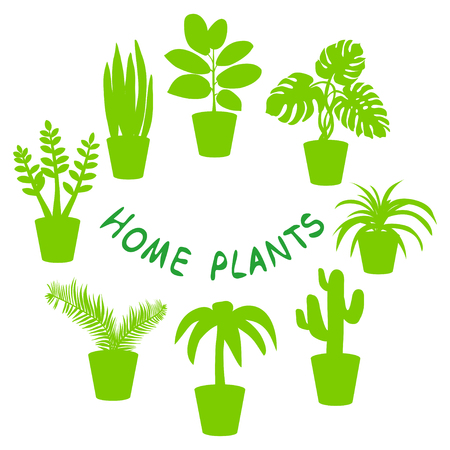 house plants, silhouette. vector illustration Stock fotó - 127075948