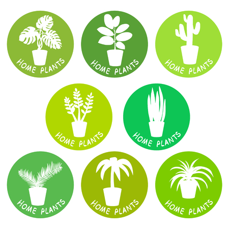 house plants, icons, silhouette. vector illustration