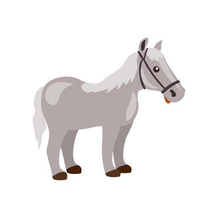 cartoon horse isolated. vector illustration