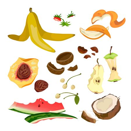 organic trash from fruit and nuts. vector illustration