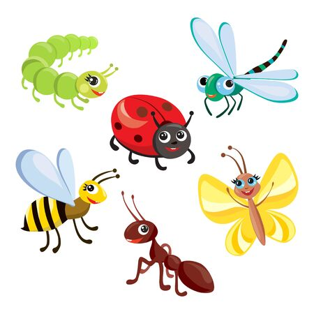 set of cartoon cute insects. vector illustration Illustration