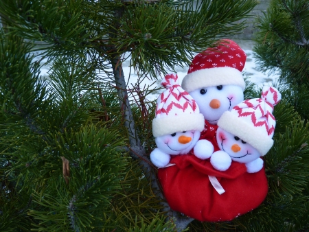 Snowman family on a conifer tree Stock Photo - 17086612