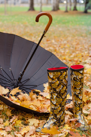 rubber boots: Rubber boots and umbrella on a background of orange foliage