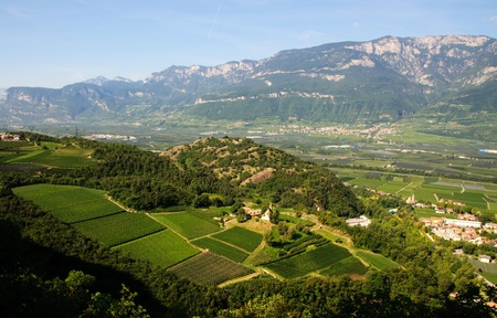 alto: Trentino Alto Adige landscape. Panoramic view of a farm (Trentino Alto Adige, Italy) that produces wine and fine apple typical of the area.