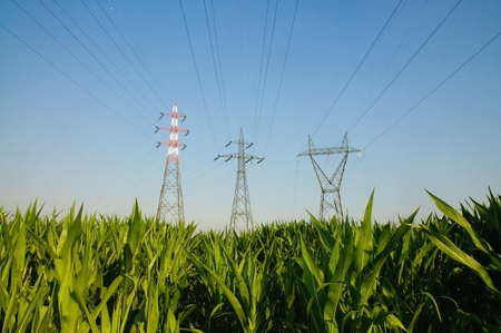 hoogspanningsmasten: Hoogspanningsmasten in een veld Stockfoto