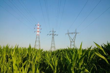 Pylons energii elektrycznej w polu