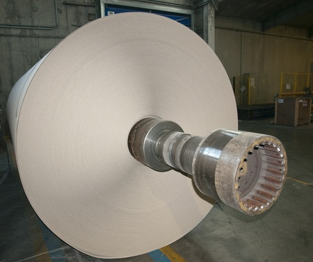 Paper and pulp mill plant - Rolls of cardboard photo