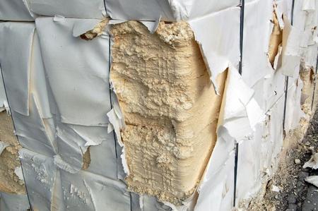 celulosa: Fábrica de papel y celulosa - Detalle de la celulosa. Se obtiene principalmente de la pulpa de madera y el algodón. Se utiliza principalmente para producir cartón y papel.