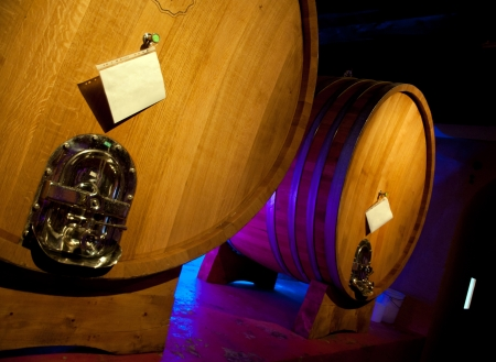 Wine barrel rack (Italy, Franciacorta) Standard-Bild