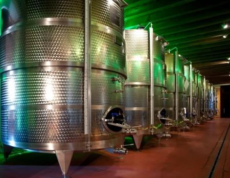 Italy: winemaking (franciacorta) Standard-Bild