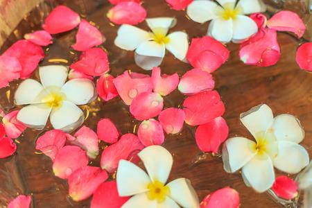soak: flower soak in water
