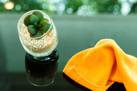 small tree: small tree on gravel in glass and orange fabric