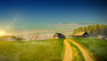 Landweg in het veld dat leidt naar de boerderijen. Van de landbouw in plattelandsgebieden Stockfoto