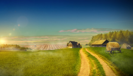 Country road in the field leading to the farm holdings. Of agriculture in rural areas Stock Photo