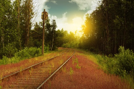 Abandoned railroad in the overgrown area Stockfoto