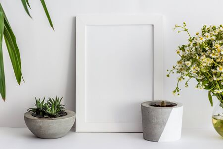 White wooden photo frame with cactus in a pot and daisies