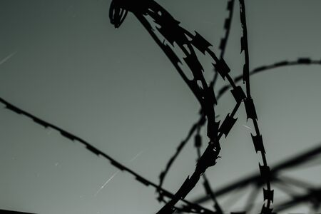 Silhouette of old barbed wire at dusk. The terrible oppressive background of the restricted area
