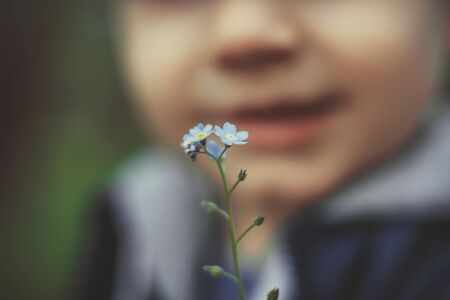 A little boy holding a plucked flower 版權商用圖片