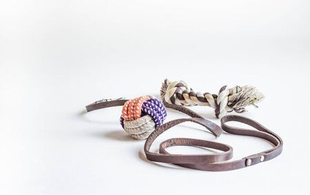 Pet accessories. Dog toys and leash 版權商用圖片