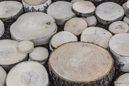 Wooden natural cut logs textured background, top view 版權商用圖片